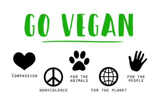 A Healthy Vegan Diet for Beginners